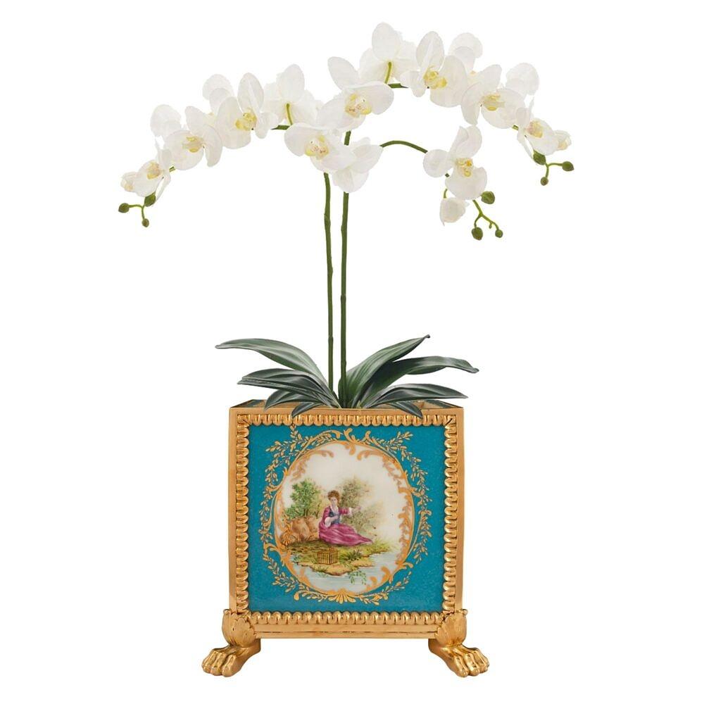 10249_1_w_orchidweb