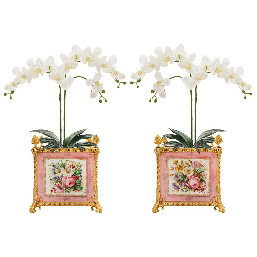 10487_1web_w_orchids
